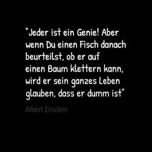 Bild Zitat von Einstein