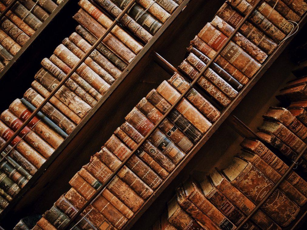 Bild von einem vollen Bücherregal nach gelungener Literaturrecherche