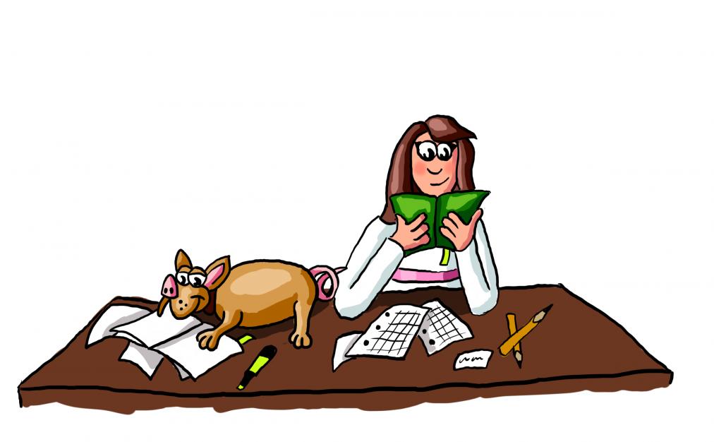 Bild von dir, wie du Spaß beim Lernen mit deinem Schweinehund hast und dadurch 3x schneller lernen kannst